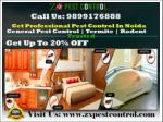 Get Up To 20% OFF in Pest Control Noida | Termite | Cockroaches