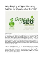 Why Employ a Digital Marketing Agency for Organic SEO Service?