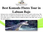 Best Komodo Flores Tour in Labuan Bajo