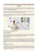 Why Should Delegate Your Search Engine Optimization Work?
