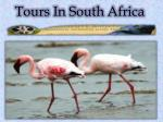 Tours South In Africa