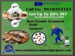 Outstanding Services Provider In Termite Treatment Gurgaon | Termite Control Gurgaon