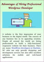 Advantages of Hiring Professional Wordpress Developers