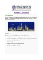 Flare gas recovery System