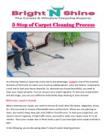 5 Step of Carpet Cleaning Process