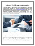 Redwood City Management consulting