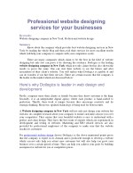 Professional website designing services for your businesses