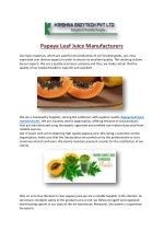 Papaya Leaf Juice Manufacturers