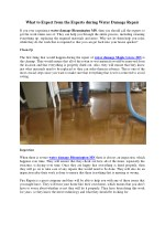 What to Expect from the Experts during Water Damage Repair
