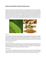 Numerous benefits of Kratom fallen leaves