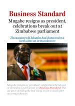 Mugabe resigns as president, celebrations break out at Zimbabwe parliament