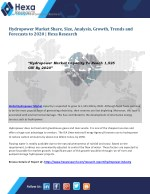 Hydropower Industry Research - Global Market Analysis Report 2020