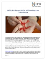 Artificial Blood Vessels Market 2022 New Investment Projects Review