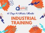 45 Days / 6 Months & Weeks Industrial Training for Web Services