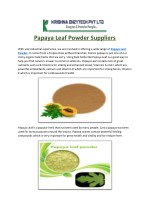 Papaya Leaf Powder Suppliers