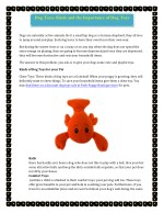 Dog Toys- Kinds and the Importance of Dog Toys