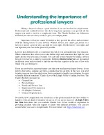 Understanding the importance of professional lawyers