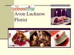 Unique Collection of Gifts by Avon Lucknow Florist