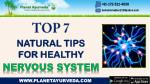 Top 7 Natural Tips for Healthy Nervous System | Strengthen Your Nervous System