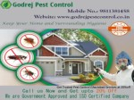 Get Trusted Pest Control Ghaziabad Services at 20%off