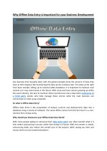 Why Offline Data Entry is Important for your Business Development