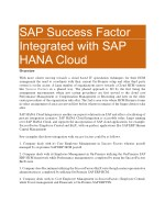 SAP Successfactors Online Training PDF in Bangalore