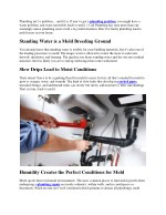 Is Faulty Plumbing Causing Mold Growth In Your Home?