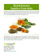Herbal Extracts Suppliers From India