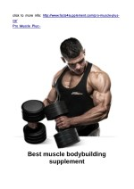 http://www.facts4supplement.com/pro-muscle-plus-ca/