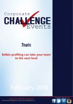 Belbin profiling can take your team to the next level