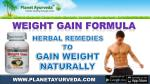 Herbal Supplement To Gain Weight Naturally - Weight Gain Formula