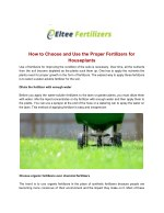 How to choose and use the proper fertilizers for houseplants