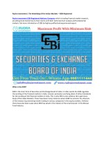 Rudra Investment | The Watchdog of the Indian Markets – SEBI Registered