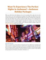 Want To Experience The Perfect Nights In Andaman? - Andaman Holiday Packages