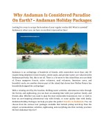 Why Is Andaman Considered Paradise On Earth? - Andaman Holiday Packages