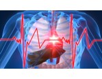 Signs Of Heart Attack In Women, Healthy Habits, What To Do When Someone Is Having A Stroke