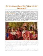 Do You Know About The Tribal Life Of Andaman? - Andaman Holiday Packages