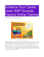 SAP Success factor PDF