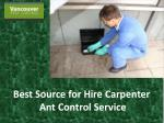 Best Source for Hire Carpenter Ant Control Service