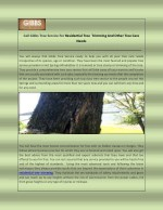 Call Gibbs Tree Service For Residential Tree Trimming And Other Tree Care Needs