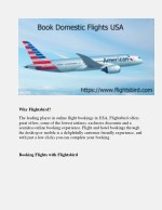 Save your money & time on domestic flight booking in USA via Flightsbird