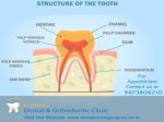 Reliable & Best Dental Clinic in Gurgaon