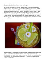 Delicious Iced Peach and lemon Green tea Recipe
