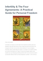 Infertility & The Four Agreements: A Practical Guide for Personal Freedom