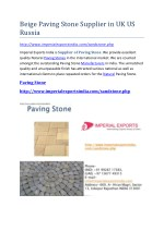 Beige Paving Stone Supplier in UK US Russia