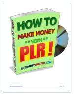 How to Make Money with PLR Content