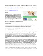 Best Probiotics for Dogs and Cats, Nutritional Supplements for Dogs
