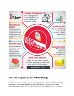 Direct Marketing Strategy   Bulk Email Solutions Provider