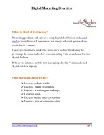 PDF | Digital Marketing Overview | Innothoughts Systems
