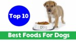 Top 10 Best Human Foods for Dogs 2018 !! Dog Health Tips 2018